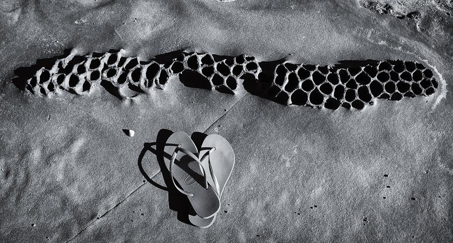 Amanda Naylor Photography rockpool-1