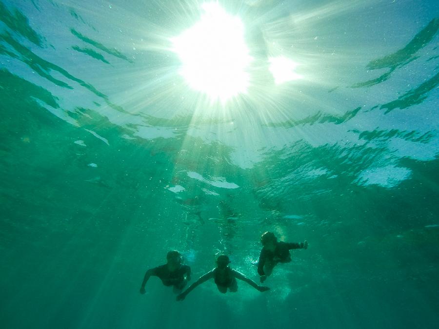 Amanda Naylor Photography Fiji underwater-1