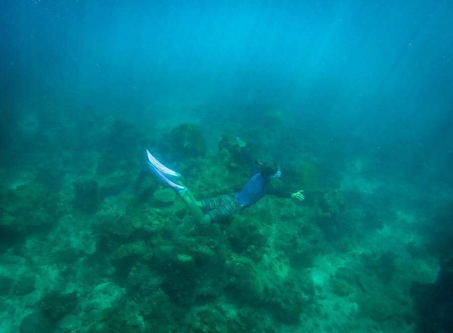 Amanda Naylor Photography snorkelling-1
